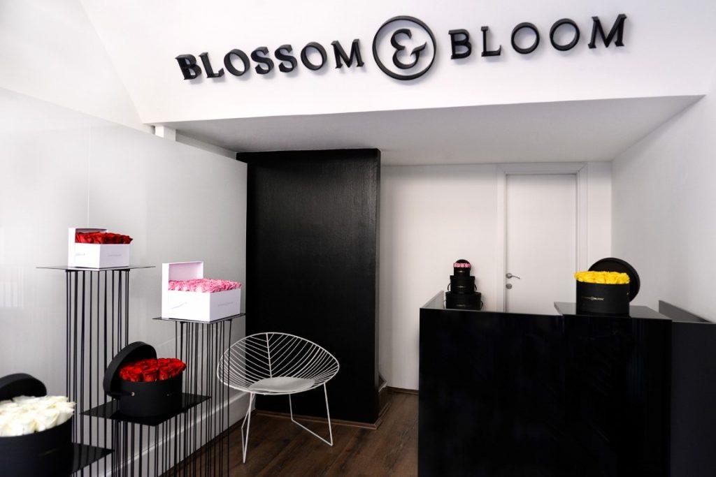 Blossom Bloom 2